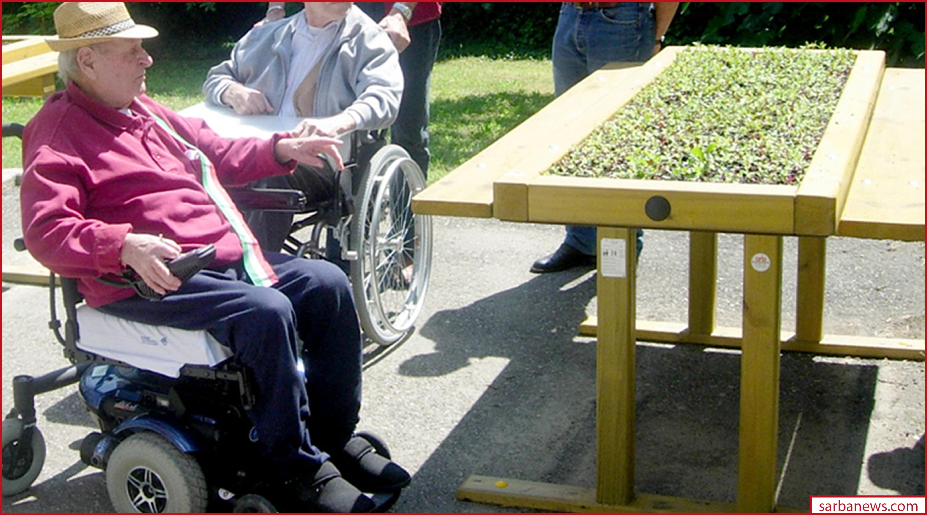 Ortoterapia: un toccasana per tutti, anziani e piccini